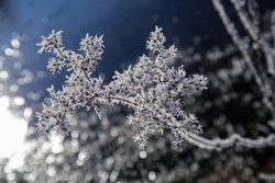 free photos Winter vereist